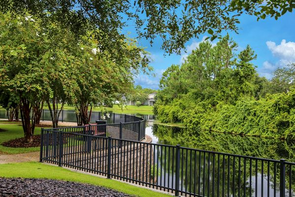 Willowcove lake overlook Nocatee
