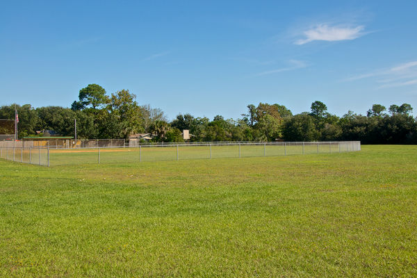 Play field Dolphin Cove PVB